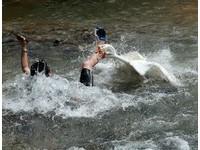 貴州遊客下溪拍照 白鵝「強制驅離」30秒啄翻他