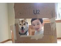 小主人手繪紙箱巴士 載心愛柴犬Maru一起去上學