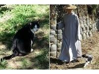 幫愛貓減重 比丘尼背貓下山再一起散步走上山當運動