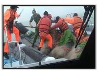 海巡署超辛苦! 陸漁民越界拒捕「木棍尖棒還蛇行」