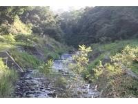 扇平森林園區,利用當地石材為材料整治扇平溪現況。(圖/農委會林業試驗所提供)