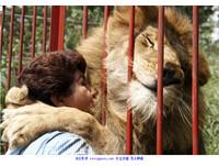 感謝救命之恩 「靈性獅子」擁抱回應