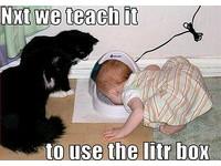 貓迷一樂園  「起笑漢堡」讓你大聲笑出來!《ETtoday 新聞雲》