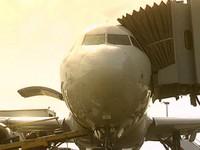 夜鷹突襲 桃園機場猛禽撞擊事件升高《ETtoday 新聞雲》