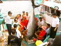 菲國槍殺漁民! 死者女兒:對台灣政府不抱希望