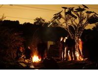 科技藝術品「太陽樹」 可充電、休息、免費上網