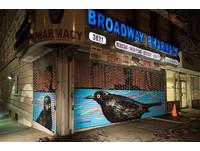 野鳥浩劫來臨…奧杜邦彩繪社區