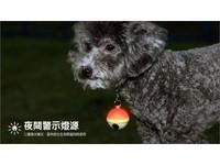 APP01/PetPal:最聰明的寵物守護燈