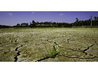 財訊/10年大乾旱來襲 完整解讀水危機