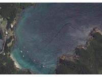 比鯊魚大、比鯨魚快 谷歌地圖捕獲紐西蘭海岸神秘生物