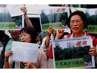 江翠國中「最美樹林」移定了 護樹志工想向馬陳情