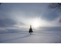 日劇裡才有的浪漫雪景 一生必來一次的北海道