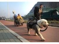 拉著輪椅帶癱瘓女友和一隻狗 他要走出一顆❤ 形中國