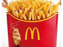 這樣吃超狂!美麥當勞薯條無限量供應 全球唯一吃到飽