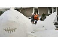 好威!美3兄弟庭院堆「巨型雪鯊」 還有河豚與海龜