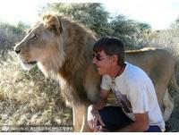 非洲赤腳仙與獅子錫安 父子情深11年