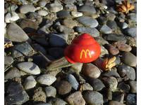 避免蝸牛被人類踩碎,網路上發起彩繪蝸牛殼的活動。(圖/取自boredpanda,下同)