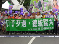 抗議馬施政傲慢 民進黨12月凱道遊行