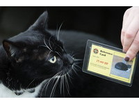 學霸貓愛混圖書館 混到一張專屬借書證