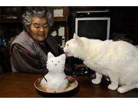 紀錄老奶奶與小白貓 伊原美代子來台開展