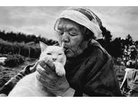 紀錄老奶奶與小白貓 伊原美代子來台開展。(圖/みさおとふくまる/伊原美代子)