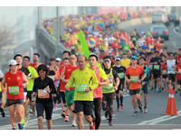 2017高雄馬拉松2月12日起跑 在地跑團分享私藏路線