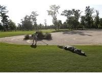 高爾夫/大隻佬鱷魚漫步球場 照片遭質疑合成
