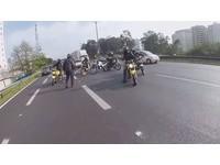 11重機騎士「緊急圍一圈」擋車救狗 網友讚:地獄天使