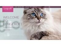 英國「五星級貓飯店」開張 給喵星人尊榮頂級服務