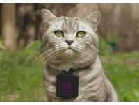 APP01/戴上Catstacam 貓咪也是攝影師