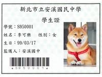 校犬「可樂」學生證有專屬條碼 只是從來沒借過書