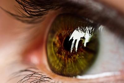 3C族眼睛拉警報...小心青光眼上身!中醫教你自製「養眼茶」