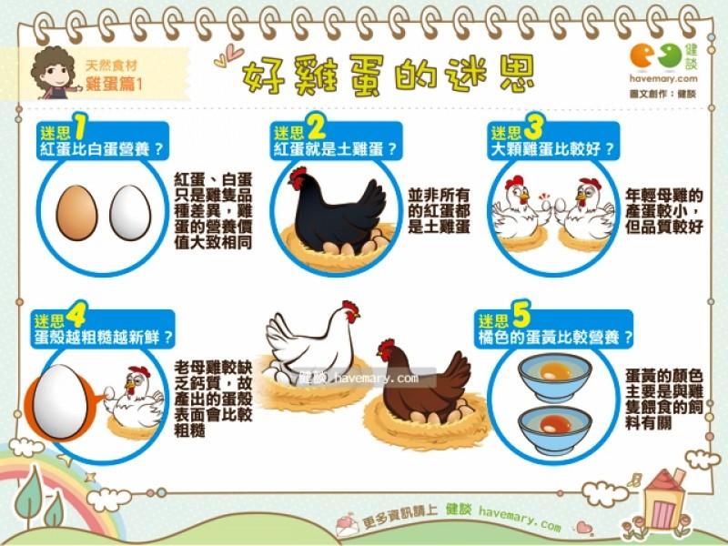 紅蛋真的比較營養? 一張圖破解「好雞蛋」5迷思!