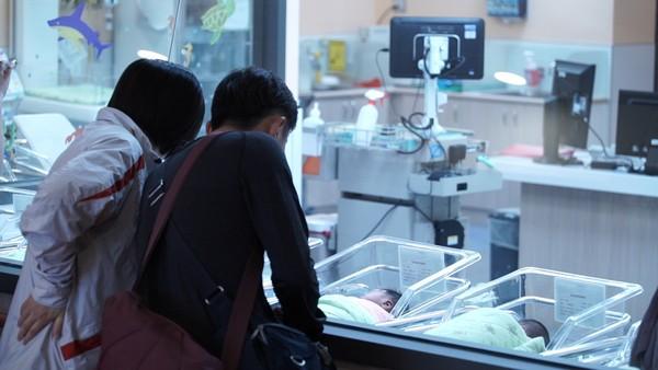 ▲醫院,嬰兒室,孕婦,新生兒,產房,早產兒,探病(圖/記者姜國輝攝)