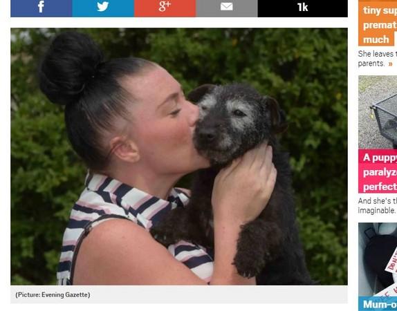 主人等了6年,終於找回失蹤愛犬。(圖/翻攝自METRO)