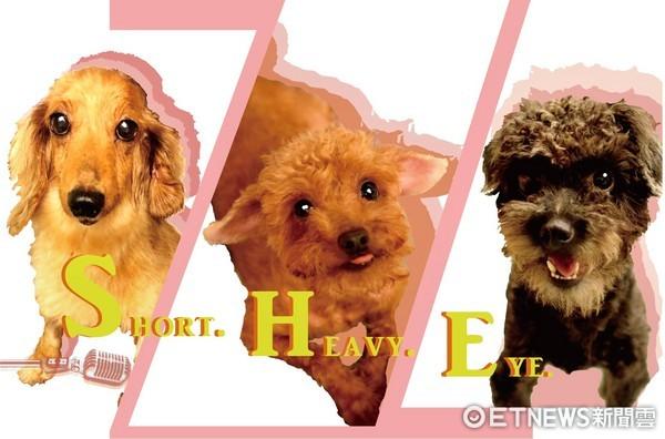 寵物界的S.H.E,心心腸、溫蒂和虎克。(圖/授權於諾亞方舟動物同樂會粉絲專頁)