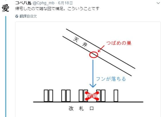 ▲日本JR車站為了保護燕子窩,封閉驗票機!(圖/翻攝自推特:コペハ鳥)