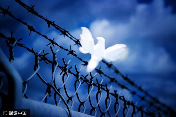 ▲監獄,牢籠,自由。(圖/視覺中國CFP)