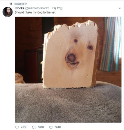 ▲網友的木頭照引發熱議 。(圖/翻攝自推特)