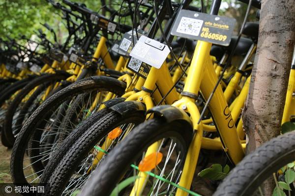 ▲▼ofo共享單車,小黃車。(圖/CFP)