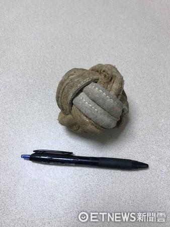 ▲約克夏吞掉一顆球。(圖/恩亞動物醫院提供)