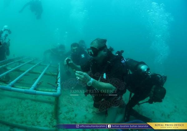 ▲▼馬來西亞柔佛州蘇丹參與珊瑚礁修復工程。(圖/翻攝自Sultan Ibrahim Sultan Iskandar粉絲專頁)