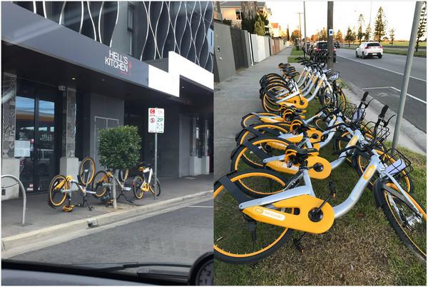 ▲▼無樁單車「oBike」在澳洲墨爾本下場一樣淒慘。(圖/翻攝自twitter-Tathra/Tathra Street臉書)