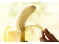 和優酪乳一起吃會致癌...關於「香蕉」的7大謠言你聽過?