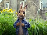 萌到融化!彼得兔拍成真人電影 開心農場偷菜被抓到啦