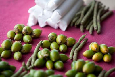蘇東坡也愛吃檳榔! 還寫詩讚嘆「可療飢懷香自吐」