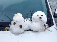 寒流來襲衝一發上山追雪? 必知10大「雪地開車注意事項」