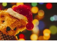 叮叮噹~萌主降臨OK超商 網讚「聖誕泰迪熊」年度最暖集點換