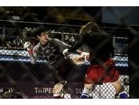 屬於台灣的MMA攻佔紅館、小巨蛋! 24日綜合格鬥錦標賽登場