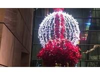 真正「台灣之光」閃耀美國白宮!燈飾業LV突破低價困境